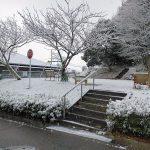 今季の初雪